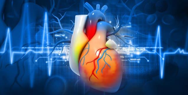 EKG (Elektrokardiogramm)